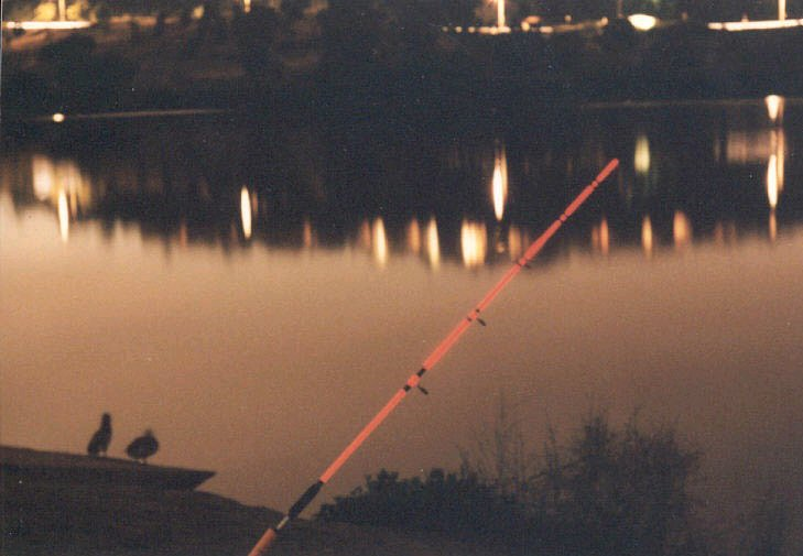 Glowing fishing line for Glow in the dark fishing pole